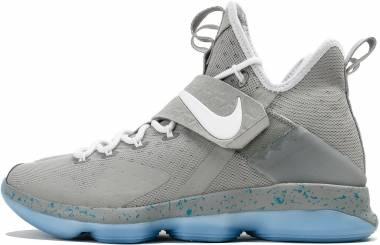 Nike LeBron XIV Matte Silver, White-glow Men