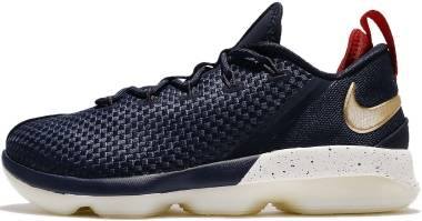 Nike LeBron XIV Low Midnight / Metallic Gold Men