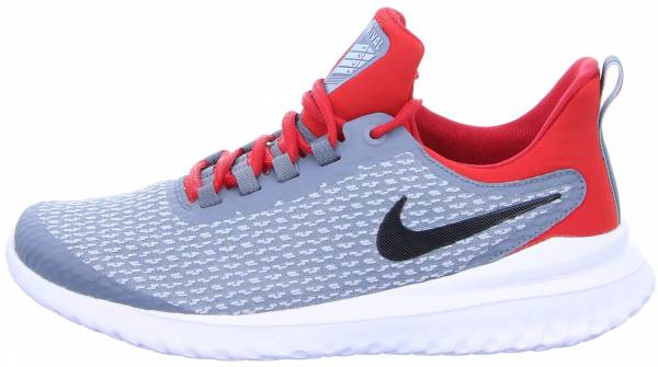 Nike Renew Rival - Gray (AA7400004)