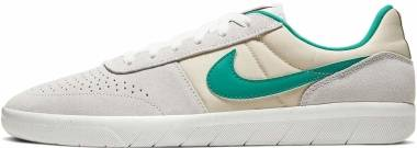 Nike SB Team Classic - Photon Dust/Neptune Green (AH3360013)