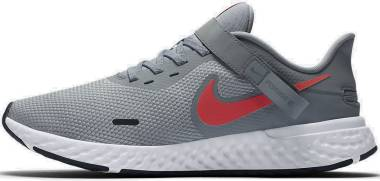 Nike Revolution 5 FlyEase - Grey (BQ3211402)