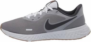 Nike Revolution 5 - Grey (BQ3204008)