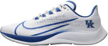Nike Air Zoom Pegasus 37 - White Pure Platinum Night Silver Game Royal (CZ5382100)