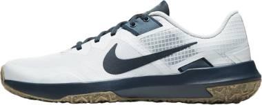 Nike Varsity Compete TR 3 - Grå (CJ0813005)