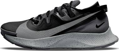 Nike Pegasus Trail 2 - Black Spruce Aura Dk Smoke Grey Particle Grey Iron Grey (CK4305002)