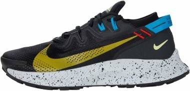 Nike Pegasus Trail 2 - Black (CK4305001)