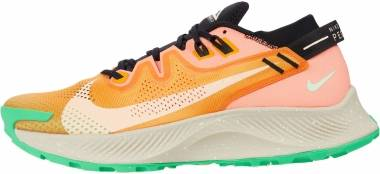 Nike Pegasus Trail 2 - Orange (CK4305800)