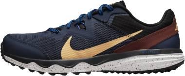 Nike Juniper Trail - Blue (CW3808401)