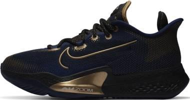 Nike Air Zoom BB NXT - Blue Void Black Metallic Gold Coin (CK5707400)