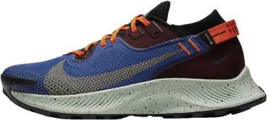 Nike Pegasus Trail 2 GTX - Multi (CU2018600)