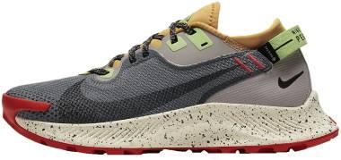 Nike Pegasus Trail 2 GTX - Multi (CU2018002)