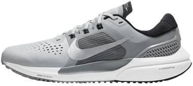 Nike Air Zoom Vomero 15 - Grey Fog / Metallic Silver / Black / Iron Grey (CU1855003)