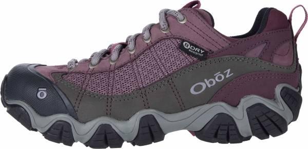 Oboz Firebrand II Low BDry - Purple (21302C)