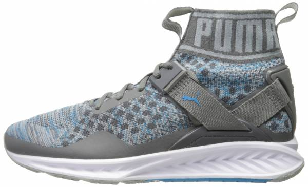99b96e74a29e Puma Ignite EvoKNIT Quiet Shade-quarry-blue Danube