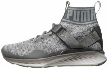 Puma Ignite EvoKNIT - Grey