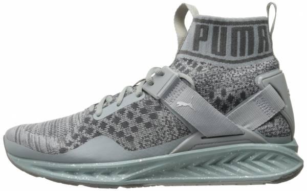 Puma Ignite EvoKNIT - Grey (18989602)