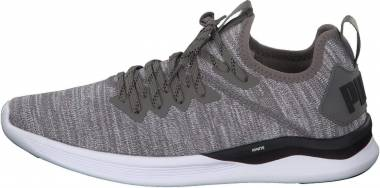 Puma Ignite Flash evoKNIT - Grigio Steel Gray Puma Black 18