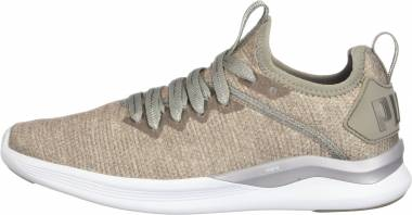 Puma Flash IGNITE EvoKNIT En Pointe - Beige