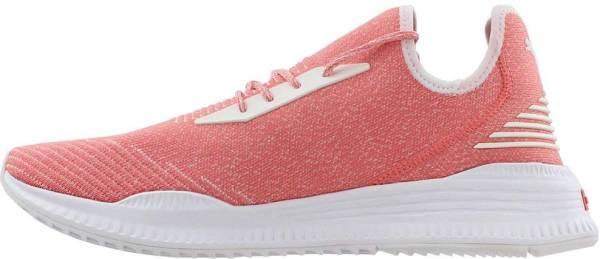 Puma Avid evoKNIT - Pink (36539206)