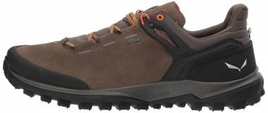 Salewa Wander Hiker GTX Brown Men