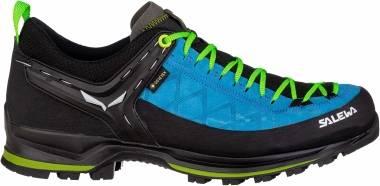 Salewa Mountain Trainer 2 GTX - Blue (613568375)