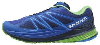Salomon Sense ProPulse Blau (Blue Yonder / Navy / Tonic Green) Men