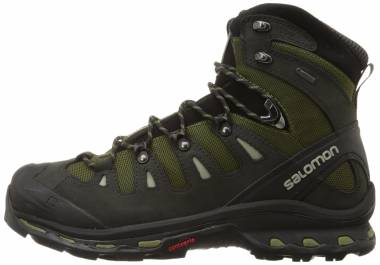 Salomon Quest 4D 2 GTX - Green (L373259)