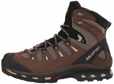 Salomon Quest 4D 2 GTX - Brown (L392924)