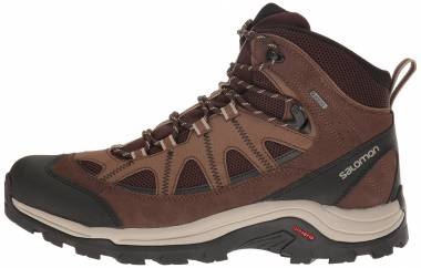 Salomon Authentic LTR GTX Brown Men