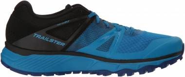 Salomon Trailster - Blue