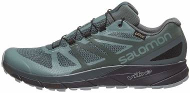 Salomon Sense Ride GTX Invisible Fit Black Men