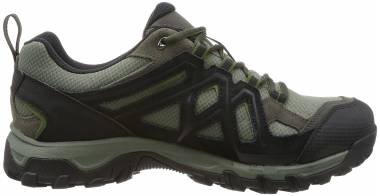 Salomon Evasion 2 GTX - Grey