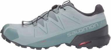 Salomon Speedcross 5 GTX - Blue (L413094)