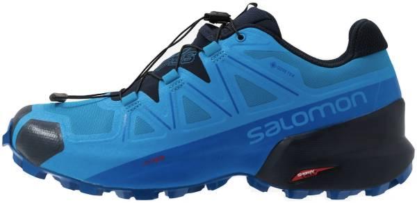 Salomon Speedcross 5 GTX - Blue (L409571)