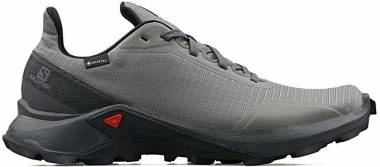 Salomon Alphacross GTX - Grey (L408055)