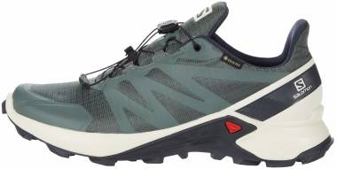 Salomon Supercross GTX - Balsam Green/Vanilla Ice/India Ink (L409542)