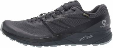 Salomon Sense Ride 2 GTX Invisible Fit - Ebony/Black/Quarry
