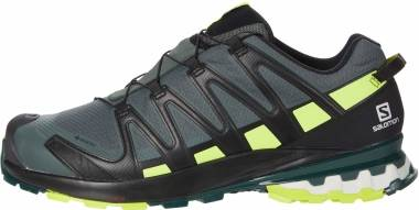 Salomon XA Pro 3D V8 GTX - Urban Chic/Black (L411180)
