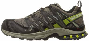 Salomon XA Pro 3D Grau (Swamp/Dark Titanium/Seaweed Green) Men