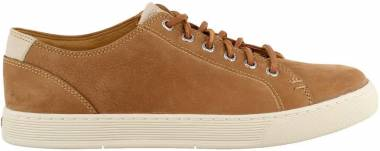 Sperry Gold Cup Sport Casual LTT Brown Men