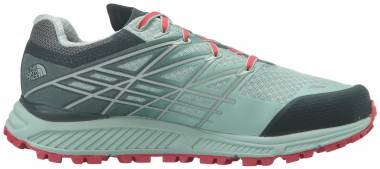 The North Face Ultra Endurance GTX - Subtle Green / Darkest Spruce (T92T66NML)