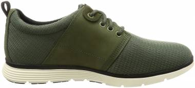 Timberland Killington Oxford - Green