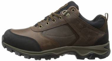 Timberland Mt. Maddsen Low Brown Men