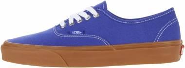Vans Gum Authentic - Blue (VN0A348A3ZE)