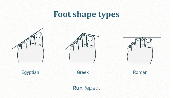Foot shape types.png