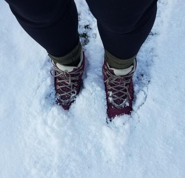 Oboz - Women's Sapphire Mid B-DRY: Ultimate hiking companion