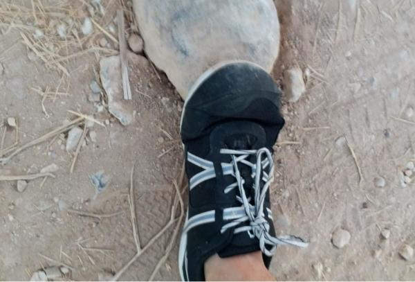 Xero-Shoes-Prio-the-upper.jpg