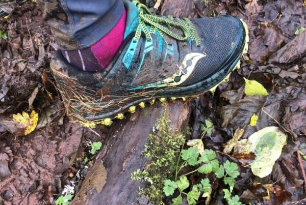 Saucony-Peregrine-ISO-Test-on-trails.jpg
