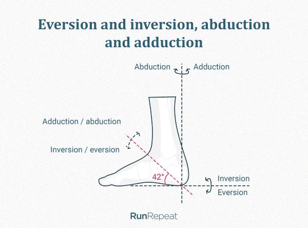 Eversion, inversion, abduction, adduction