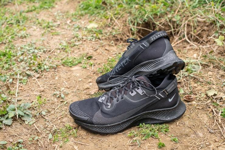 Nike Pegasus Trail 2 GTX in black